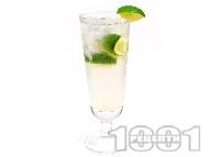 Рецепта Коктейл Джин Рики (Gin Rickey)